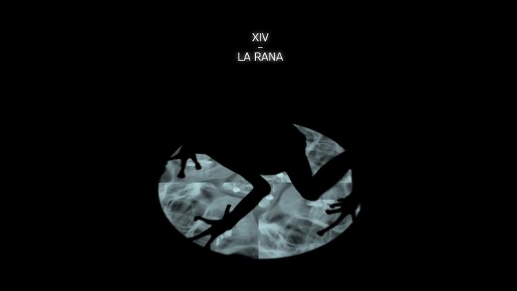 la_rana