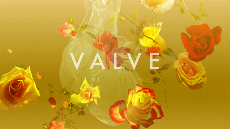 The Human Valve II